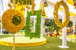 _MG_1333_RashiNaren_Wedding_BhavenJani_24September2015